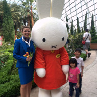 Tulipmania with Miffy at Gardens By The Bay
