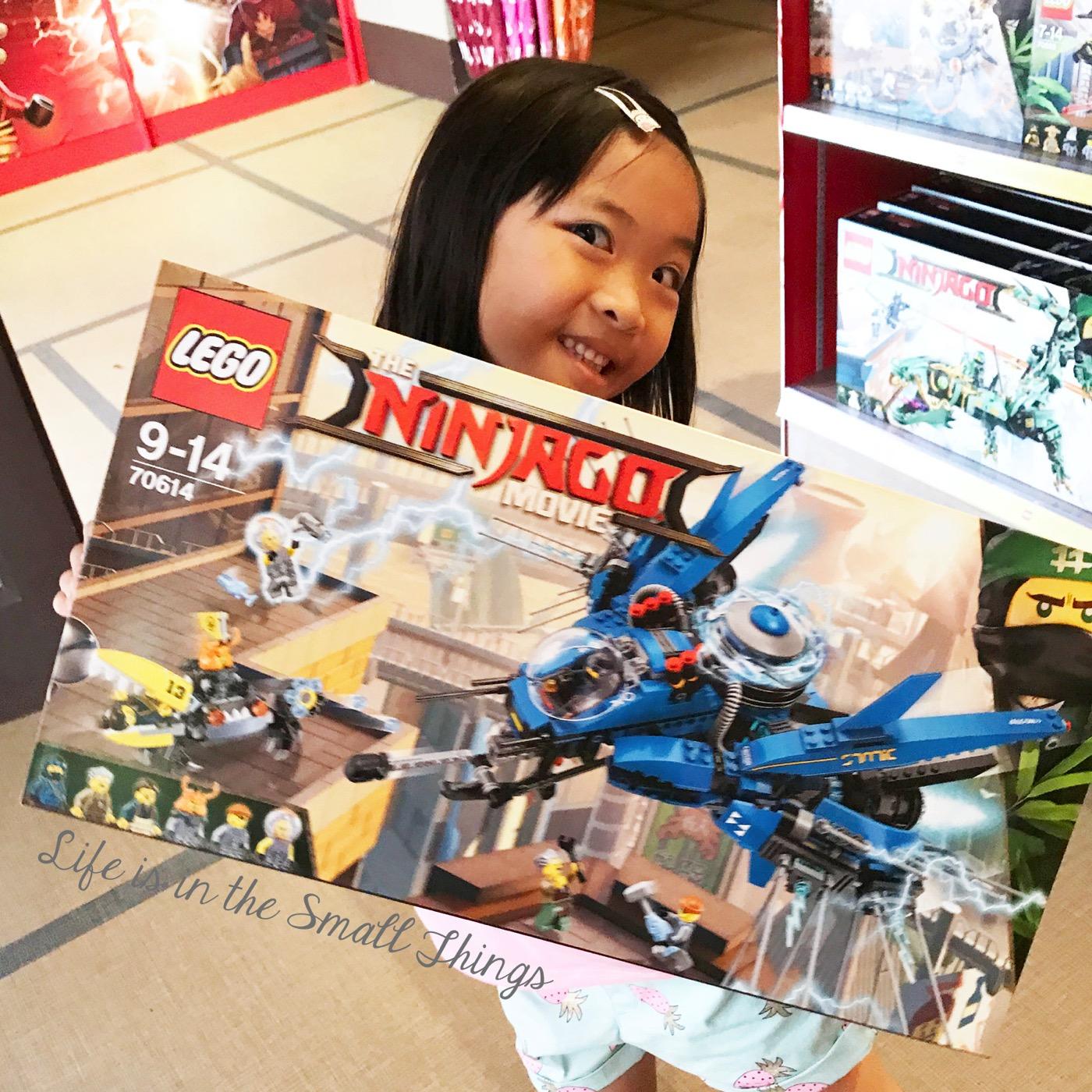 Legoland5thBrickversary6